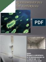 s7-Microorganismos en Su Habitat Natural Aire