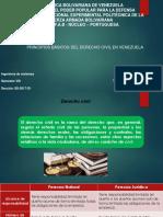 UNIDAD 3. PRINCIPIOS BÁSICOS DEL DERECHO CIVIL EN VENEZUELA.pptx