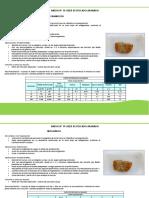 ANEXO N°19 FILETE DE PESCADO APANADO v2.pdf