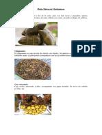 153268713 Platos Tipicos de Chachapoyas PDF