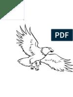 aguia deenho