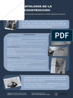 Infografía de Patologías de La Construcción