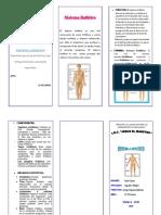 sistema linfático triptico