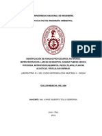 LAB4MII.pdf