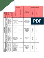 Matriz Identificacion de Peligros Valoracion de Riesgos y Determinacion de Controles.xls