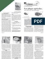 guiadelmaestro_176_plagas