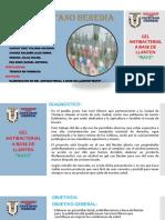 diapositiva-RAYZ.pptx