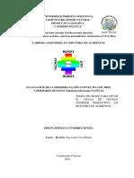 TESINA FINAL GERMAN ESPAÑOL.pdf