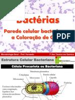 AAula 03 - Biologia de Bactérias - Parede Celular Bacteriana e a Coloração de Gram