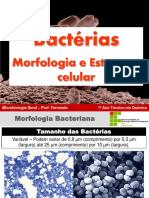 AAula 02 - Biologia de Bactérias - Morfologia e Estrutura Celular Bacteriana