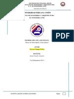Informe Limites de Plasticidad