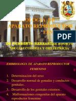EMBRIO+AP+GENITAL+FEM..pps