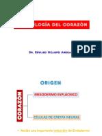3 Corazón.pdf