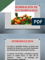 frutas y hortalizas.pptx