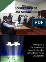 DR. FRANK ALMANZA PRINCIPIOS - CURSO INPE.ppt