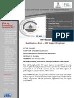 QP- BSS Support Engineer.pdf