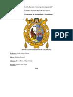 Informe15 Estrucutra Interna Diego Torres