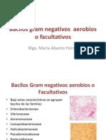 Bacilos Gram Negativos Aerobios o Facultativos