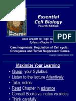 8 Cell Cycle Carcinogenesis Oncogenes Tu,Or Suppressor Genes (1) (1)