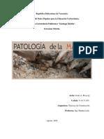 Patologias en La Madera (Jesus)