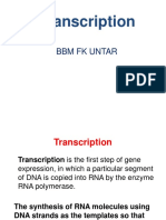 transkripsi gen
