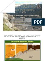Olmos Proyecto