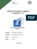 Informe de La Planta de Alimentos Congelados S.a.C