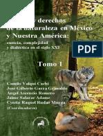 Libro Del CA Capital y Derechos de La Naturaleza Con Isbn 29 de Marzo. 2019.