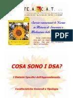 1 Cosa Sono i DSA Caratteristiche Generali e Tipologie (1)