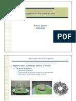 EXPERIENCIA EN CULTIVO DE SETAS (MUY COMPLEJO).pdf