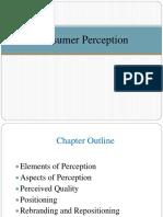 Lecture 5 - Consumer Perception