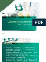 ADRENERGIK DAN KOLINERGIK.pdf