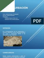 diapositivas sobre bioturbación