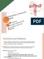 patologia colului.pptx