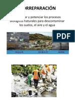 BIORREPARACIÓN.pptx
