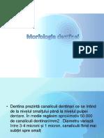Studiul individual nr2  (2).pptx
