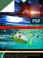 La Contaminación Del Agua en Mar del Plata