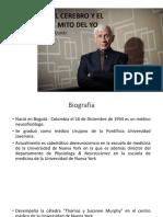 Presentación Llynás (1)