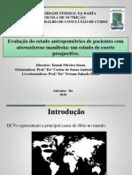 Slide TCC - Final Tainah PDF