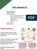 Lab 6. Tejidos Animales