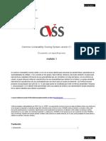 Cvss v31 Specification r1.en.es