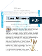 Clase-Lenguaje-Producción Textual # 19