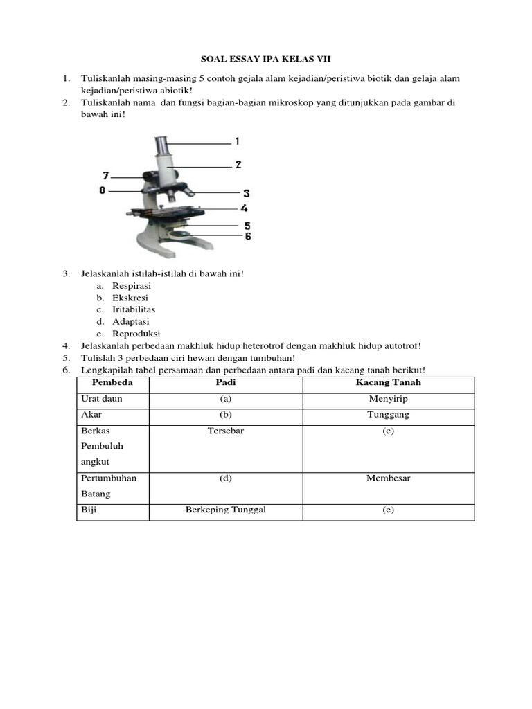 Soal Essay Ipa Semester Ii Kelas Vii
