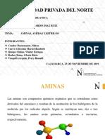 AMINAS, AMIDAS Y NITRILOS EXPOSICION.ppt
