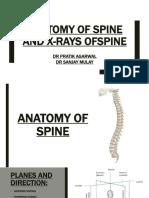 spineanatomyandxray