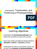 Allocation Translocation and Partitioning of Photoassimilates