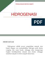 PPT HIDROGENASI.pptx