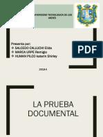 Prueba Documental
