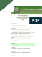 Lt Konstitucija