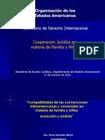 Seminario Derecho Internacional Familia Nuria Gonzalez